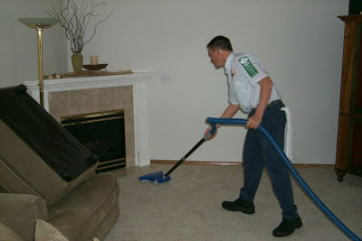 Image Result For Certified Carpet Cleaners